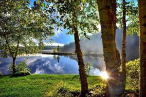 Voyage linguistique Vancouver Canada