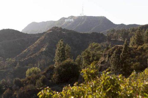 sejours agency Séjour linguistique campus UCLA à Los Angeles