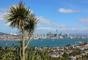 Gap Year Auckland