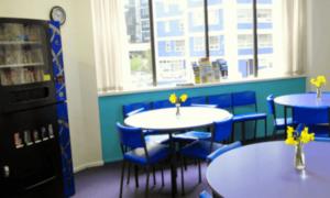 école de langues gap year auckland