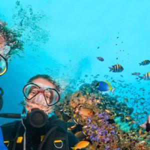 Séjour anglais et plongée Malte (diving)
