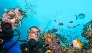 Voyage Anglais et plongée