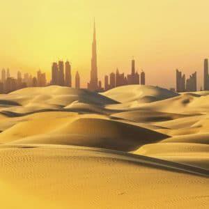 Chez le prof à Dubai